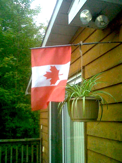 minden flag