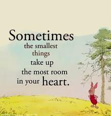 sometimes the smallest...