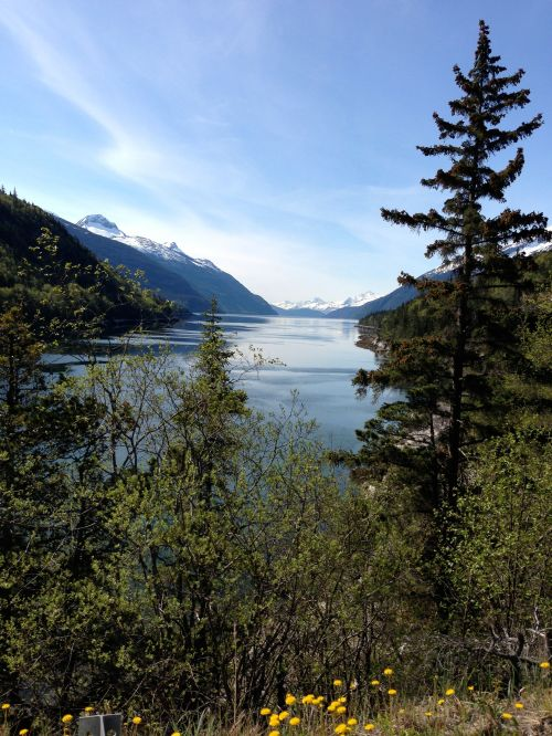 beautiful Juneau