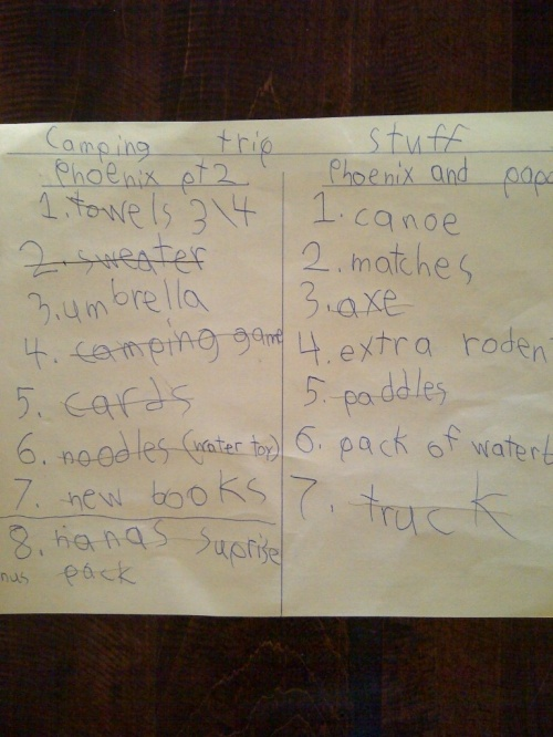 camping list 2