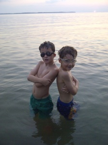 studs in the lake