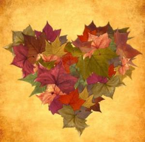 fall, thanksgiving