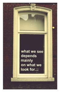 what we see is what we look for