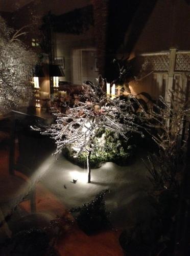 ice in yard 2