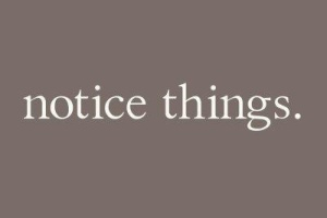 notice things