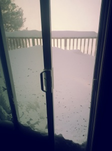 view from the back door in snow