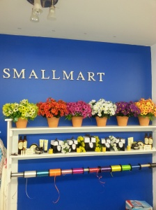 wishing for spring in smallMart