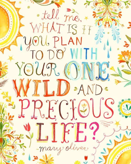 what is it that you plan to do with your wild and precious life?