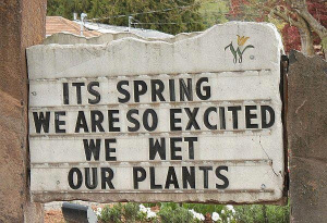 it's spring...we're so excited..