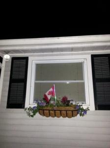flag in window box